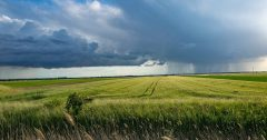 Regenwolken überm Virologenland